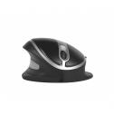 Oyster Mouse - ergonomische Maus